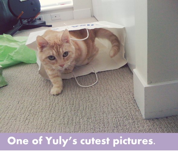One of Yuly's Cutest Pictures-OurTorontoLife.com