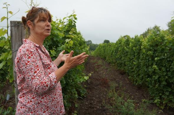 Caroline Grange Prince Edward County Winery OurTorontoLife